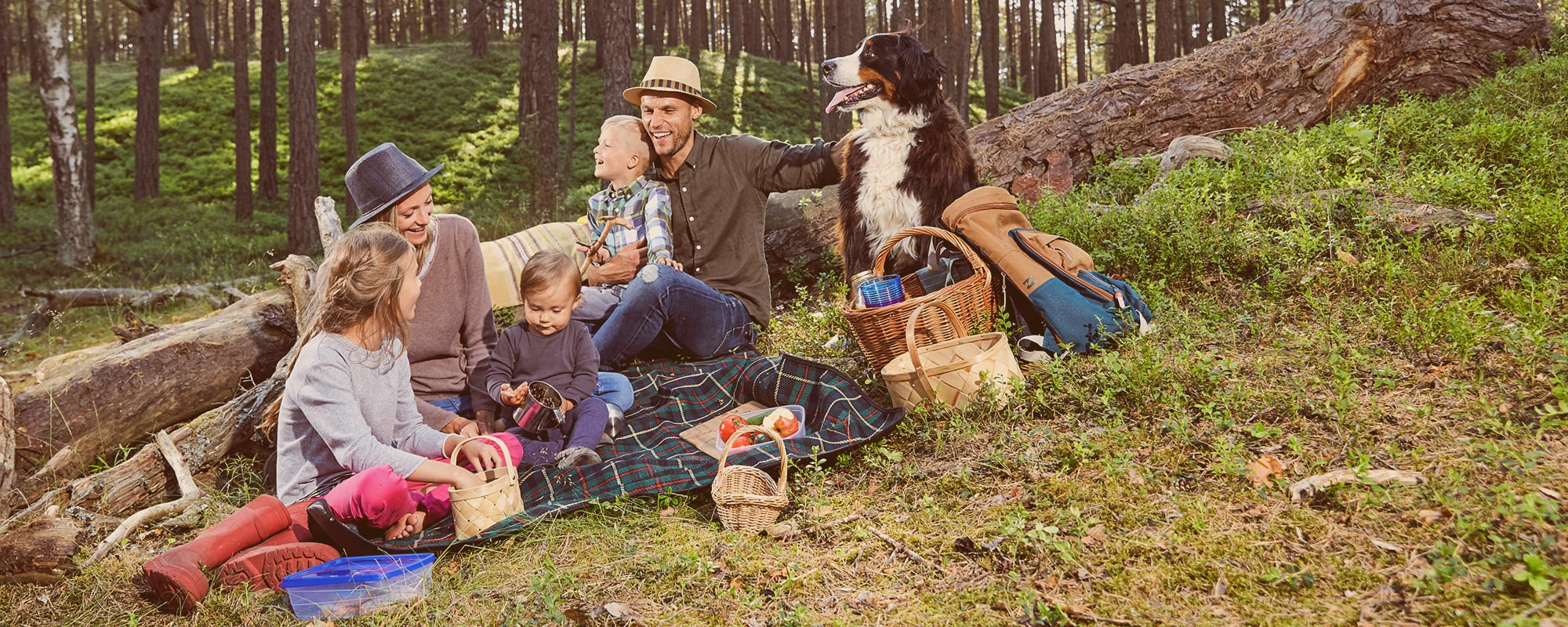 Family in a forest having a picnic
